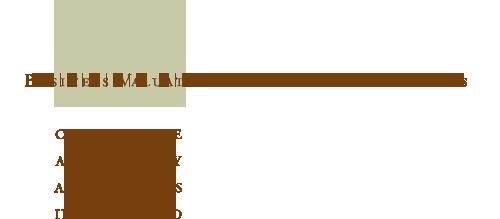 CAA: Corporate Advisory Associates Incorporated - Business Valuation and Financial Advisors